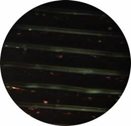 Various - Ambient Dub Volume 4 (Jellyfish)
